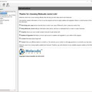 Embedded help in Moleculix Junior